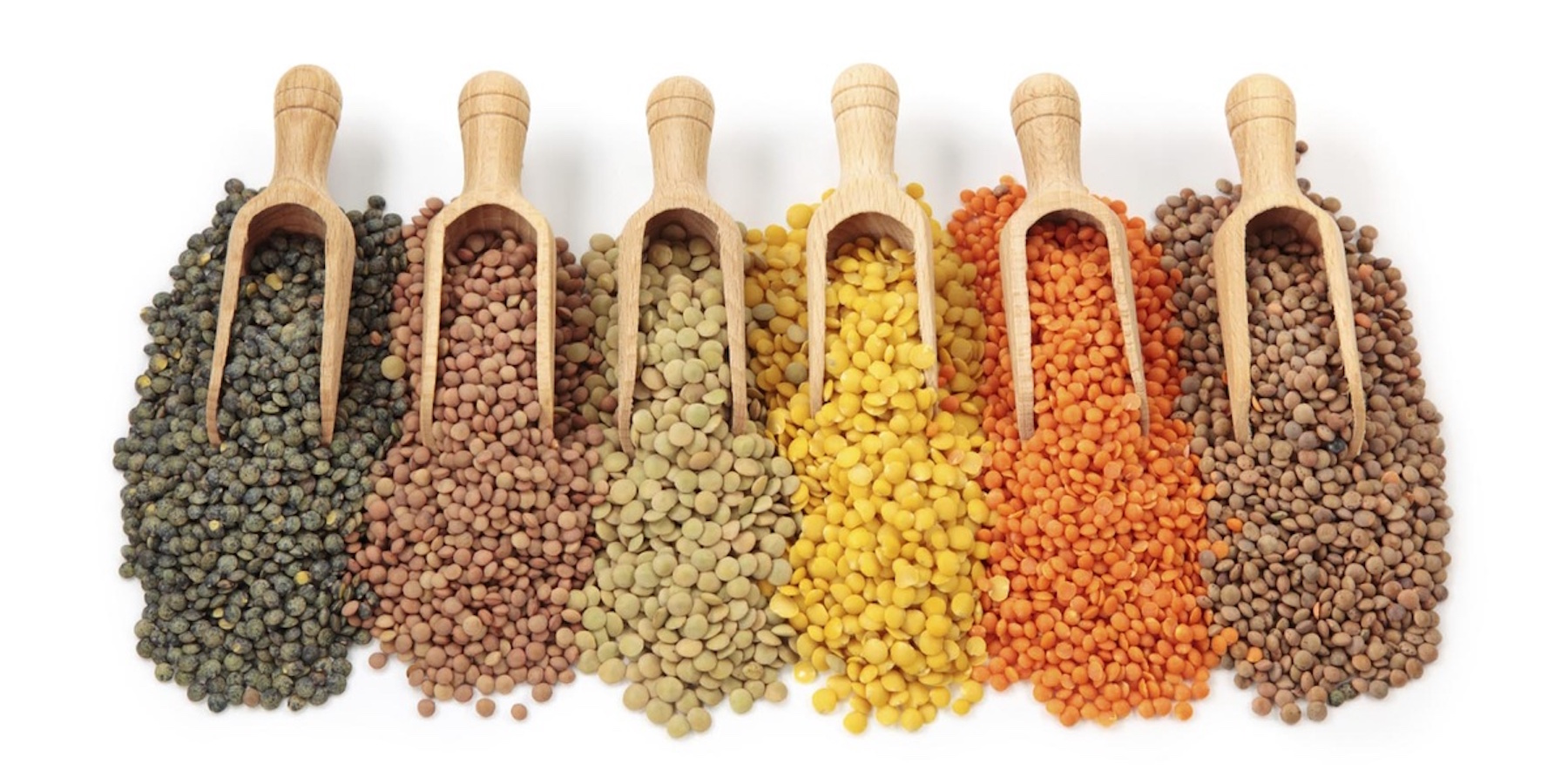 Authentic Indian Pulses Exporters